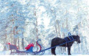 как провести новогодние каникулы в Челябинске
